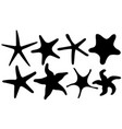 set of different starfish vector image vector image