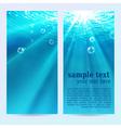 Set of underwater vertical banners vector image