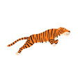 tiger jumping isolated on vector image