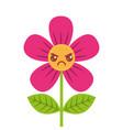 beautiful flower angry kawaii cartoon vector image