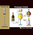 champagne cocktail infographic set recipe flat vector image vector image