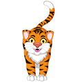 Cute tiger cartoon posing vector image vector image