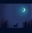 deer walks in night forest vector image