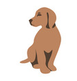 dog puppy flat style vector image
