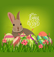 easter eggs and bunny spring with flower vector image vector image