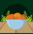 fresh fruits oranges cartoon vector image vector image