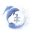 Graphic dolphins with circle of water vector image
