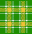 green plaid pattern vector image vector image