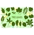 leaves of plants pictograph set vector image vector image