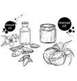 organic hand drawn oils almond oils coconut vector image