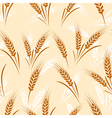 wheat seamless vector image vector image