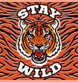 wild tige head print vector image vector image