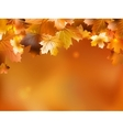 Autumn background with leaves EPS 10 vector image vector image