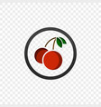 color icon with a picture of a cherry vector image vector image