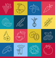 digital green red blue yellow vegetable icons vector image
