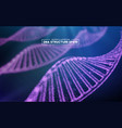 genome dna dna structure eps vector image vector image
