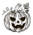 halloween pumpkin engraving style vector image vector image
