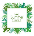 hot summer days promotional poster with leaves vector image