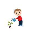 Man watering plant vector image