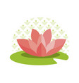 pink lotus on green leaf and circle with pattern vector image vector image