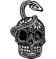 Snake and Skull vector image vector image