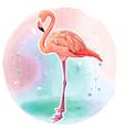 watercolor beautiful realistic pink flamingo vector image