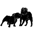 Bulldog dog pug vector image