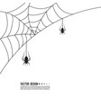 creepy spider vector image