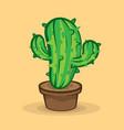 green cactus in pot on beige background vector image