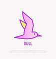 seagull thin line icon modern vector image