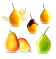 set of pear vector image vector image