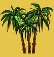 three cartoon palm trees on a yellow background vector image vector image