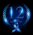 twelve years anniversary vector image