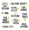 Vegan signs set vector image