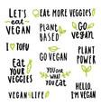 Vegan signs set