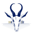 antelope deer head icon vector image