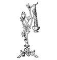 graeco-italic foliated shaft shaft vintage vector image vector image