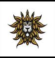 lion head logo template vector image vector image