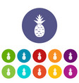 pineapple set icons vector image vector image