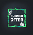 summer sale banner frame with leaves vector image