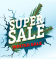 winter sale concept shopping special offer vector image vector image