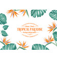 beautiful card with a wreath strelitzia vector image
