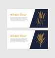 collection horizontal banner templates with vector image