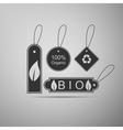 Eco tags icon vector image
