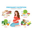 pregnancy nutrition infographic elements in flat vector image