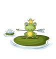 princess frog vector image