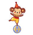 circus monkey vector image vector image
