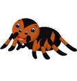 cute tarantula cartoon vector image