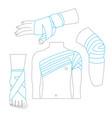 elastic medical bandage thin line set body parts vector image vector image