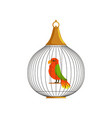 exotic tropical bird in cell of round shape vector image vector image